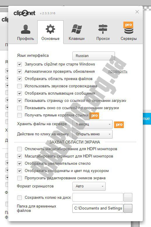Скриншот Clip2Net
