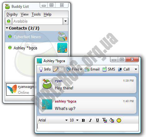 Скриншот Digsby