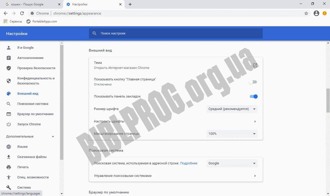 Скриншот Google Chrome Portable