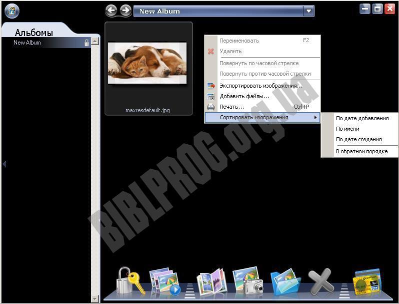 Скриншот PicaSafe