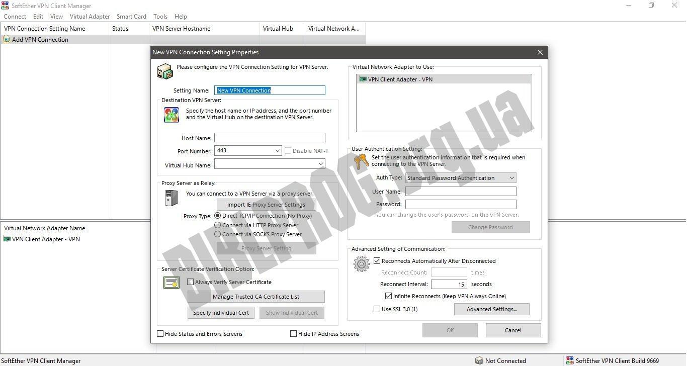 Скриншот SoftEther VPN
