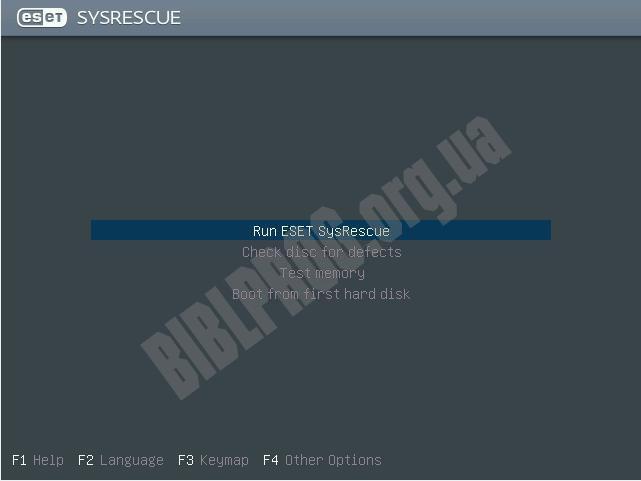 Скриншот ESET SysRescue Live